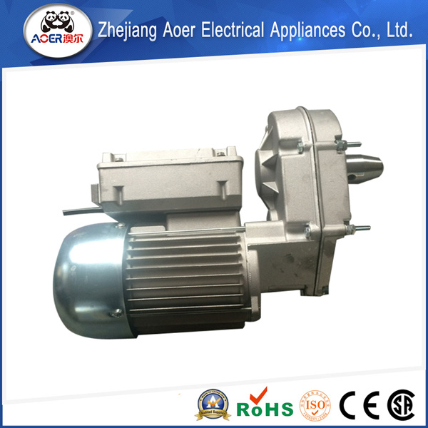 Variable Speed Low Rpm Gear Electric Motor