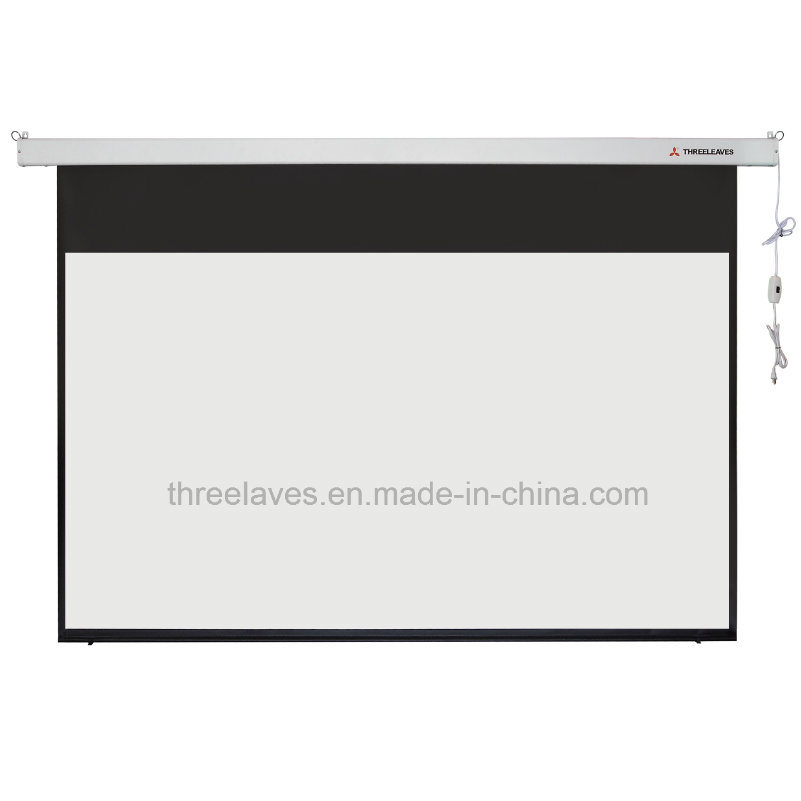 Motorized Screen, Large Electric