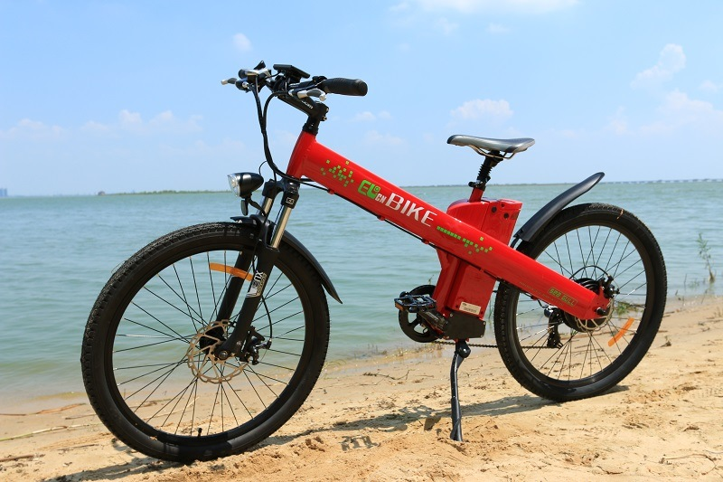 Exclusive Design Mountain E-Bike with Hub Motor 36V/250W
