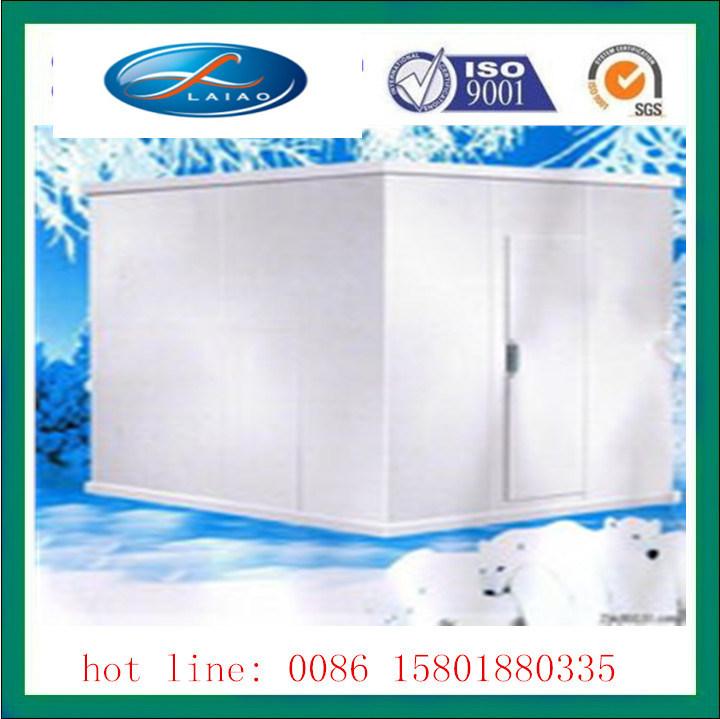 Coldroom with PVC Curtain Ice Room Storage Freezer