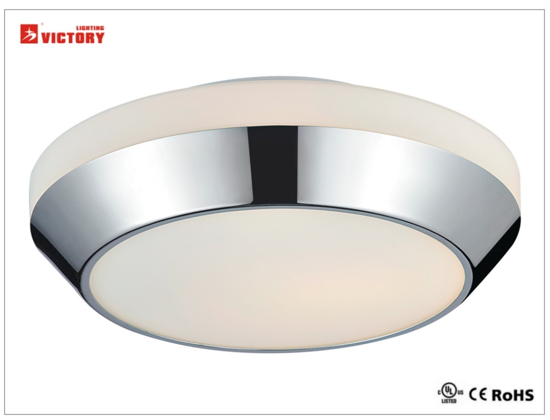 Waterproof Simple Round Home Modern LED 5W Ceiling Light with Opal Glass