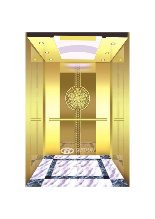 Commercial Gearless Passenger Home Lift