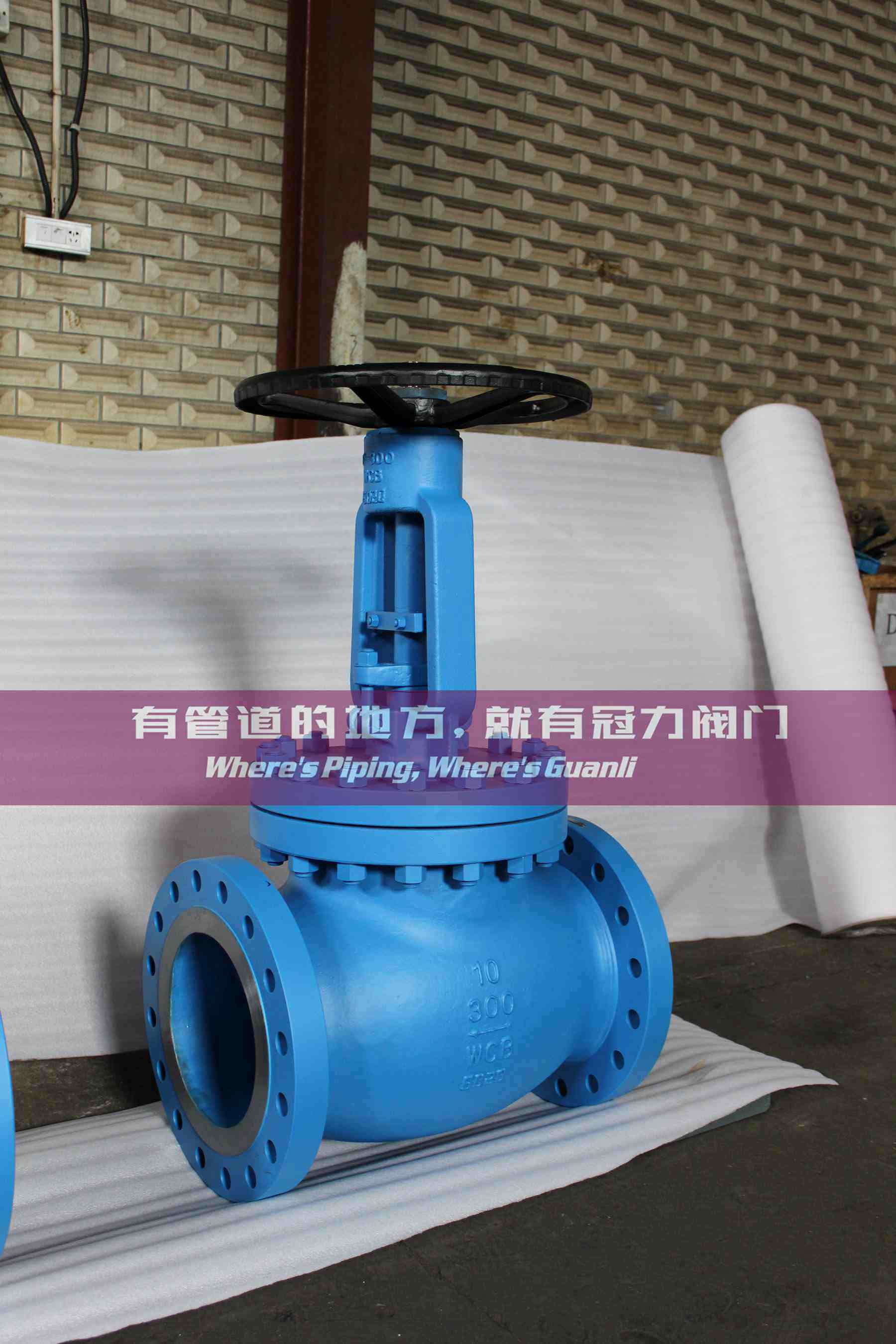 ANSI Gate Globe Check Valve with API ISO Ce