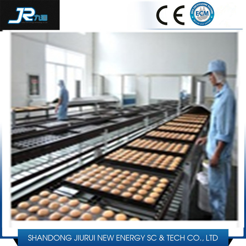 Stainless Steel Wire Mesh Belt Conveyor for Drying Line