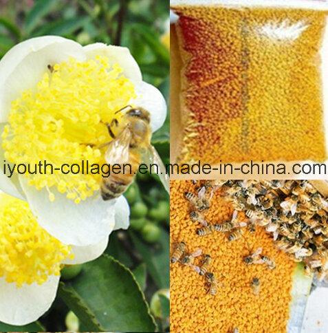 Top Pollen 100%Natrual Tea Tieguanyin Bee Pollen, No Antibiotics, No Pesticides, No Pathogenic Bacteria, Anticancer, Nourish Internal Organs, Prolong Life