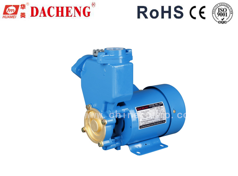 PS126 Electric Water Pump