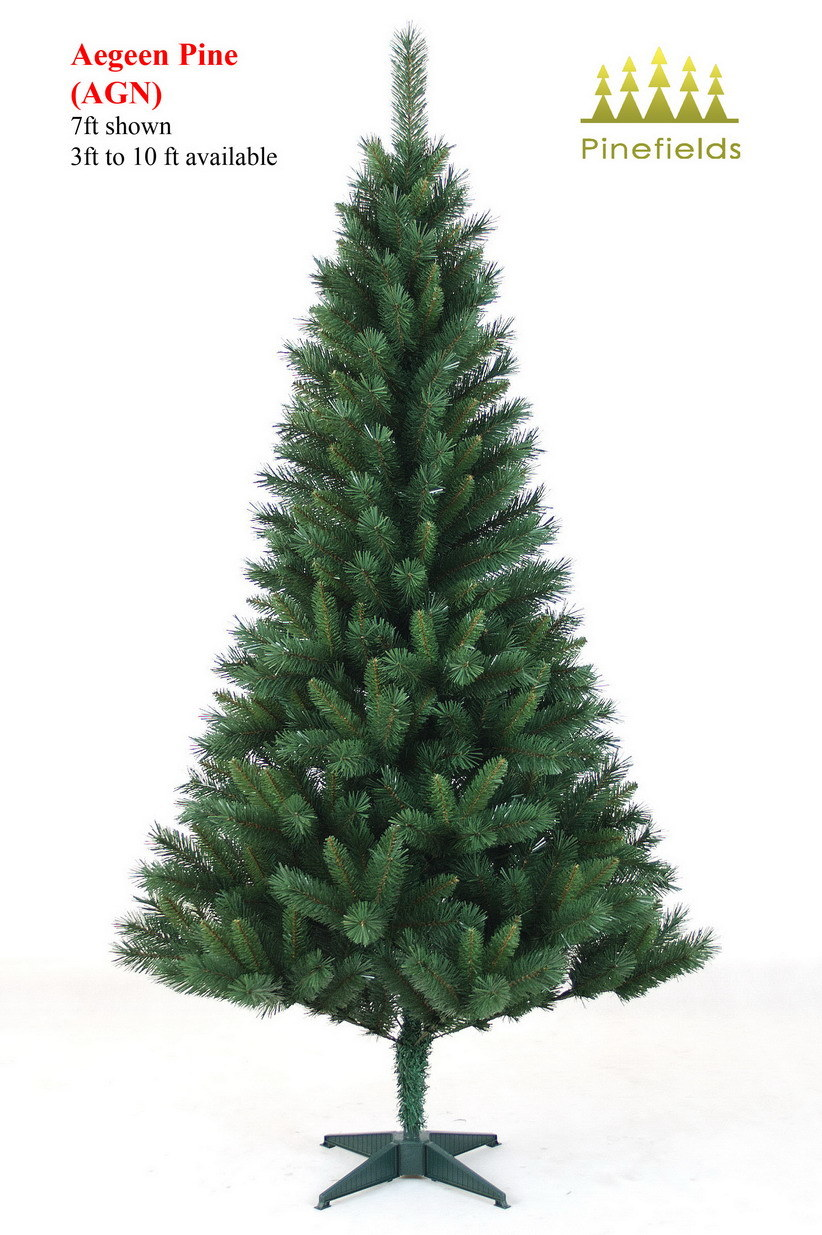 how many metres is 15ft 28 images antenna retriever 2  : Christmas Tree Aegeen Pine from www.dptaughtme.com size 822 x 1235 jpeg 205kB