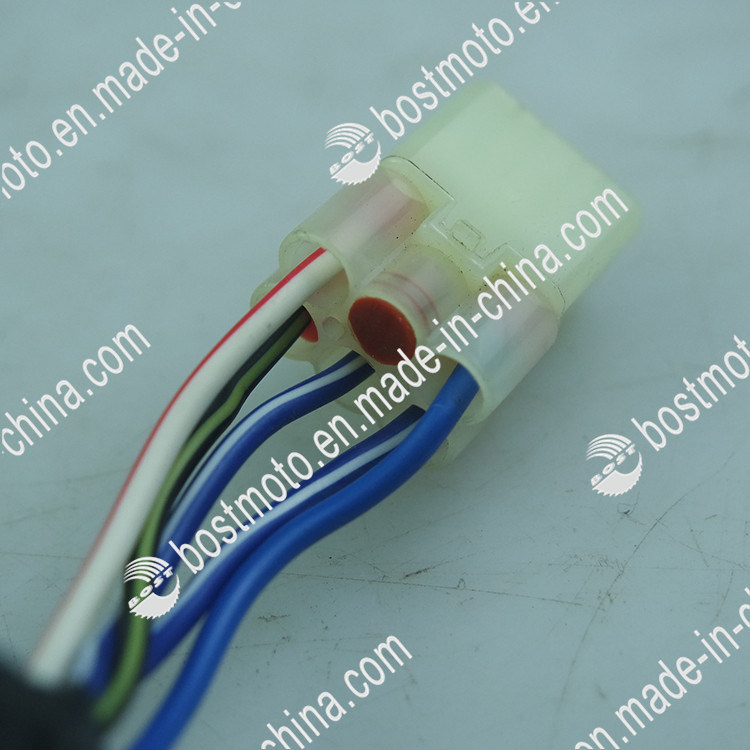 Motorcycle Parts Magnetic Coil Stator Comp for Bajaj 135
