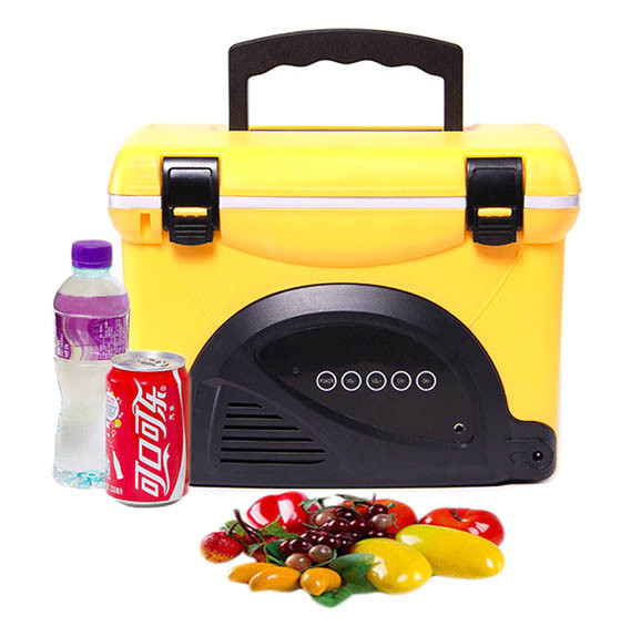 Fashionable Fishing Cooler Box 5 Liter with Radio for Keeping Temperature Use