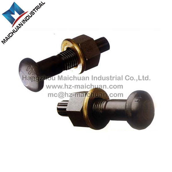 China Fastener High Strength Torsion Shear Bolt/Tc Bolt