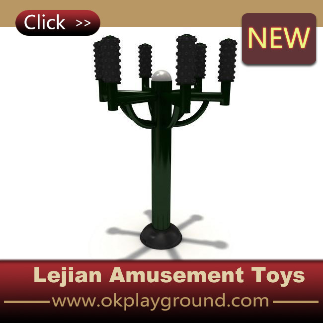 professional Manufactory Outdoor Fitness Equipment (LJ-030)