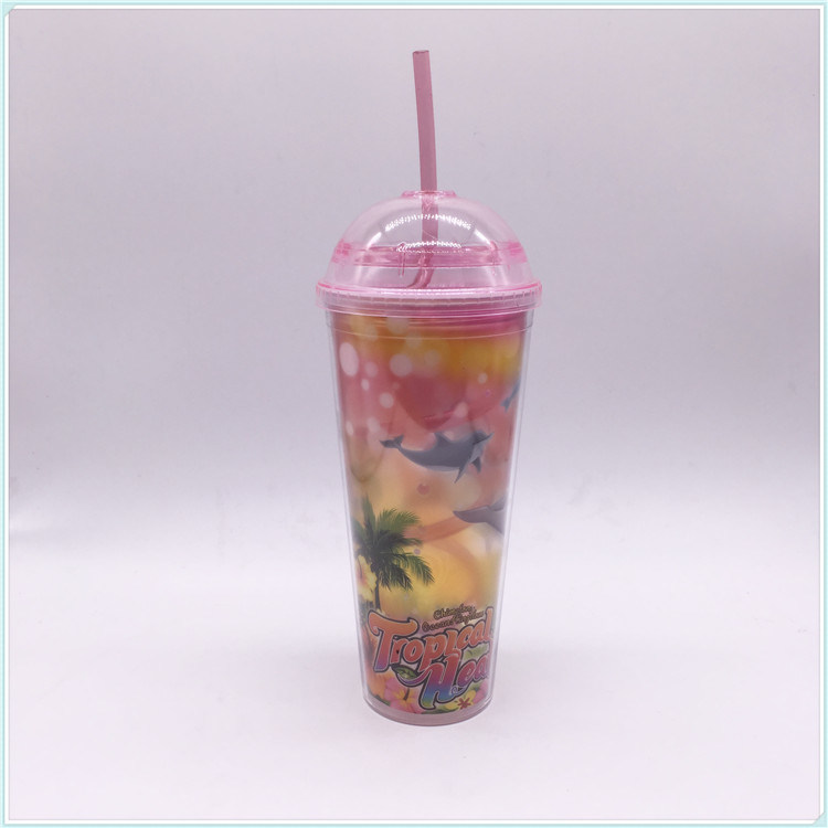 550ml Plastic Travel Mug for Coffee (SH-PM35)