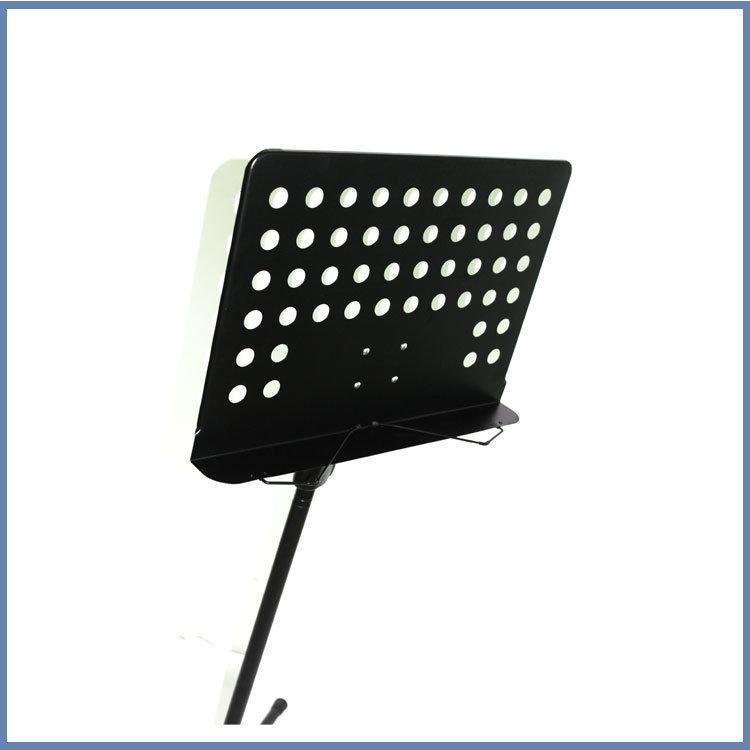 Professional Speaker Stand