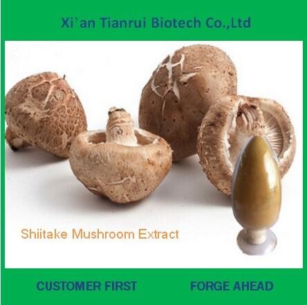 Pure Natural Shiitake Mushroom Extract