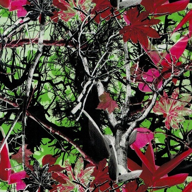 Tsau Top 0.5m Width Tree Wholesale Hydrographic Transfer Print Film