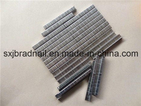 High Quality 416j Pneumatic Nails Sofa Staple