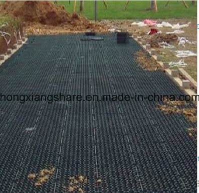 HDPE Geonet for Drainage