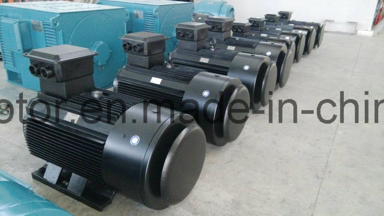 3-Phase Asynchronous Motor Series Sdm-Zsspecial for Sand Maker