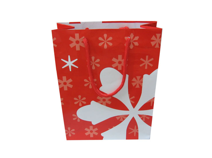 Red Garment Paper Gift Bags From China Packaging Manufacturer (FLP-8953)