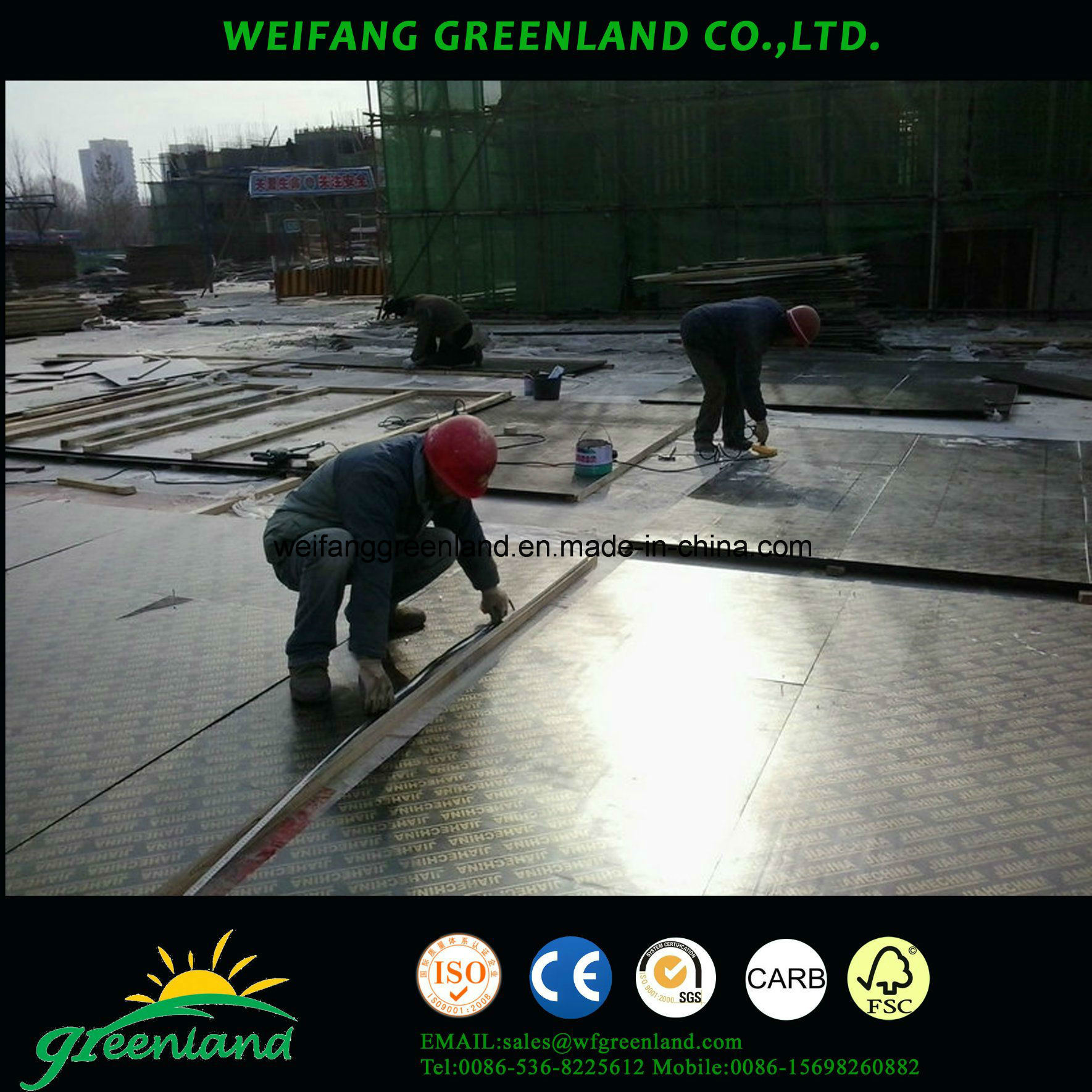 Sepcial Size Film Faced Plywood for Construction