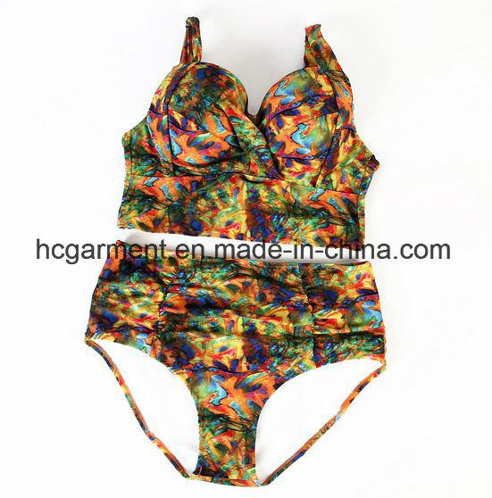 Lady′s Large Size Printing Bikini, Plus-Size Bikini Swimming Wear