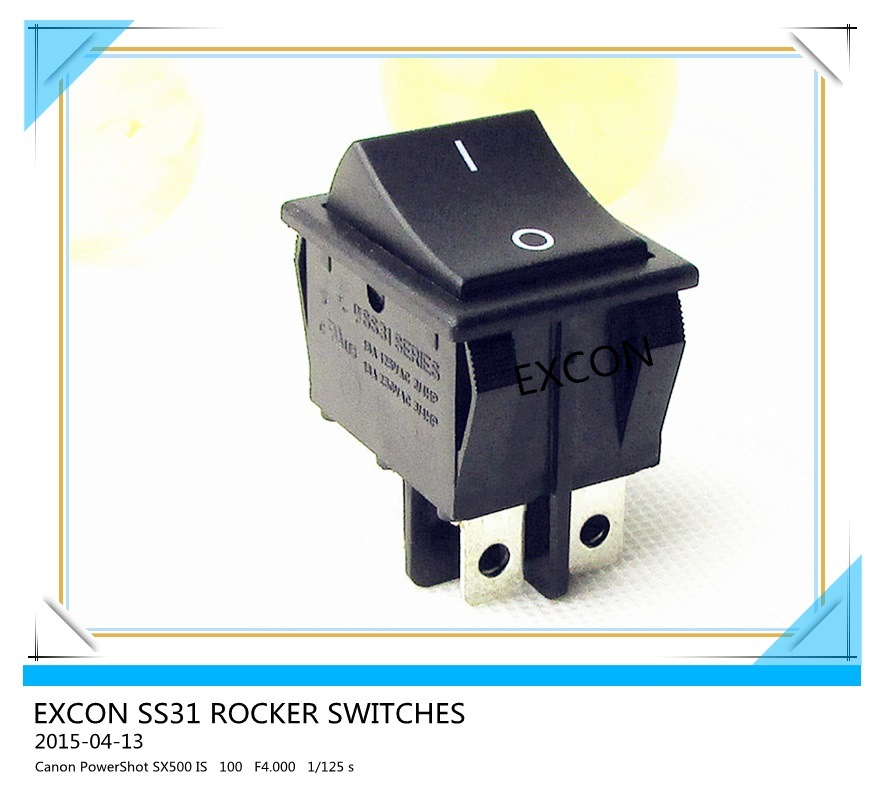 Excon Ss31 Boat Rocker Double Pole for Heater, Home Appliance