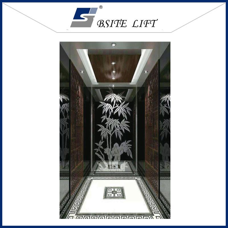 Passenger Elevator in German Technology