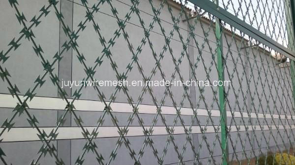 Razor Barbed Wire/Razor Wire/ Stainless Steel Razor Wire