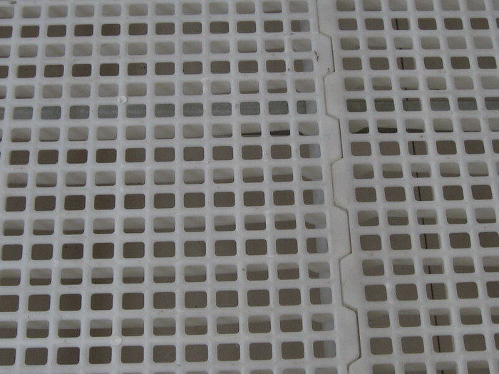 Poultry House Use Virgin Material Plastic Slat Floor