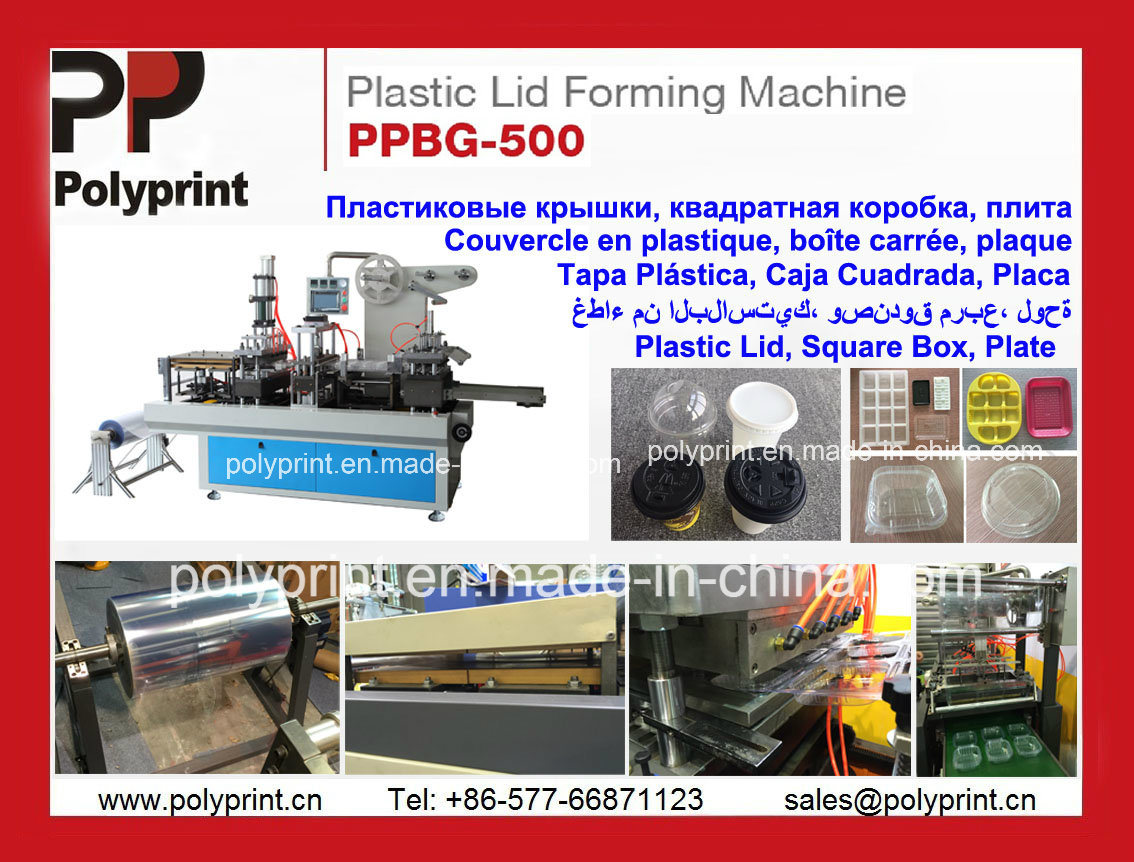 Automatic Thermoforming Machine for Plastic Clamshell Box