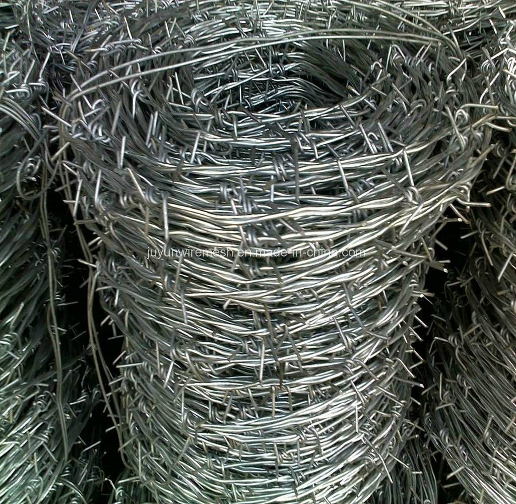 Barbed Wire/Razor Barbed Wire (specialized manufacturer)