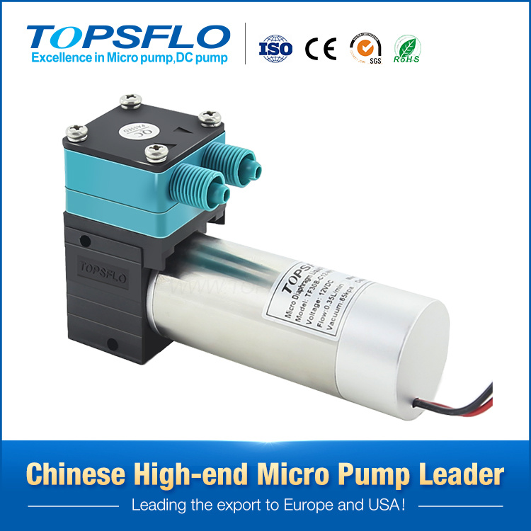 China 50-350ml/Min Small Stable Flow Alcohol Fireplace Pump ...