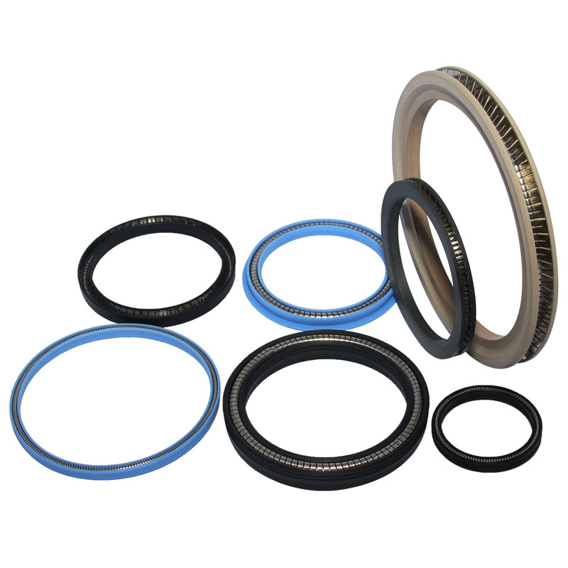 High Quality Spring Energized PTFE Seals