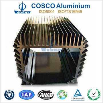OEM Precison Aluminum Profile for Heat Sink with Anodizing