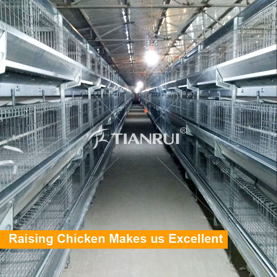 H type /A type 4 Tiers Layer Chicken Battery Cage