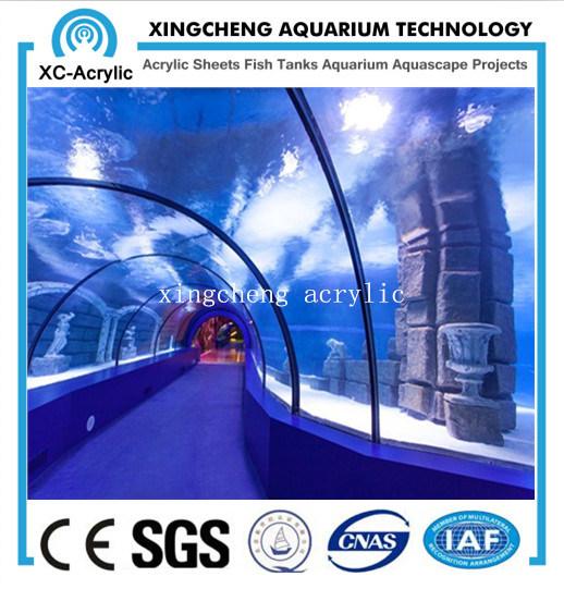 Customized Large Clear Acrylic Tunnel Marine Oceanarium