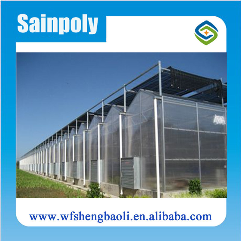 Galvanized Pipe PC-Sheet Greenhouse for Sale
