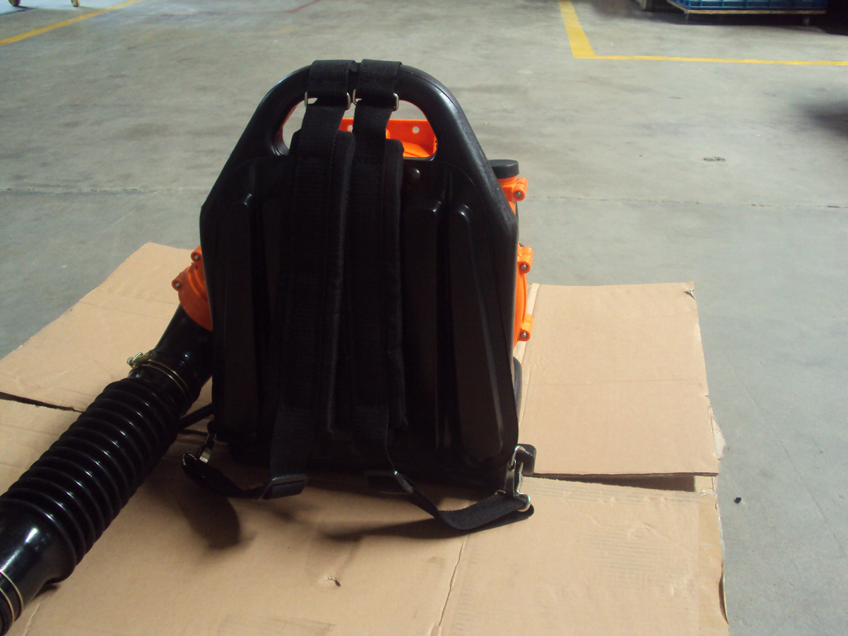 High Quality Gasoline Backpack Leaf Blower (EB808)