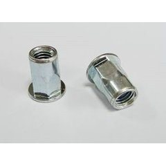 China Fasteners Flat Head Thread Blind Rivet Nut