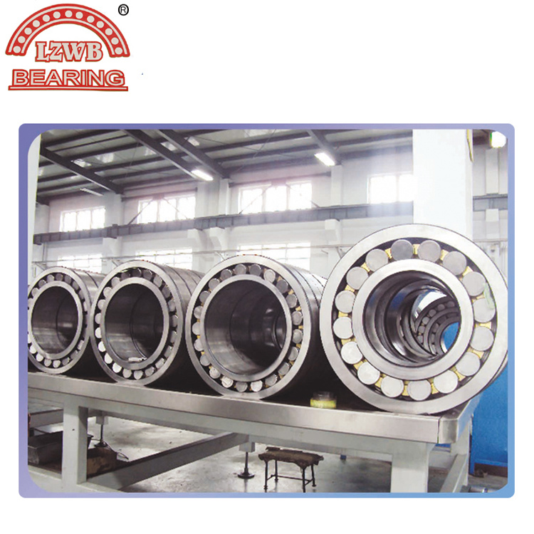 Long Service Life Spherical Roller Bearing (MB CAM CC)