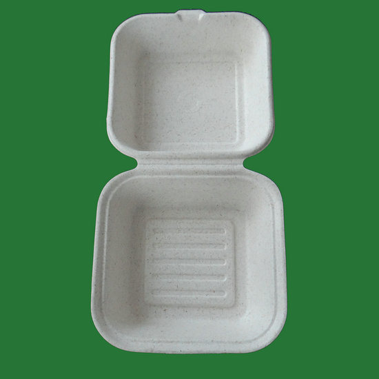 Disposable Sugarcane Bagasse Biodegradable Clamshell