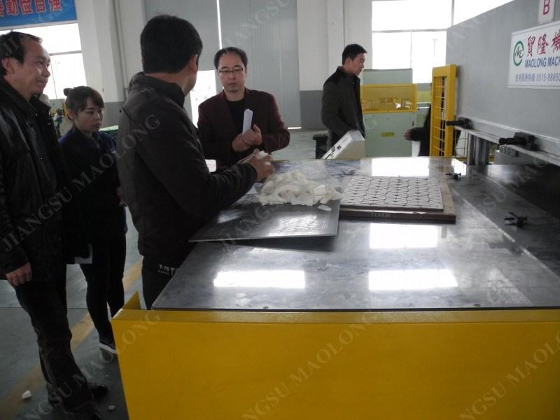 Automatic Double-Side Hydraulic Cutting Machine by Swing Arm Type Feeding