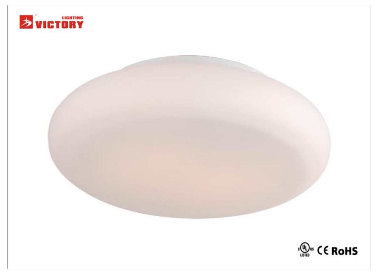 Modern Simple LED Ceiling Surface Lamp for Living Room