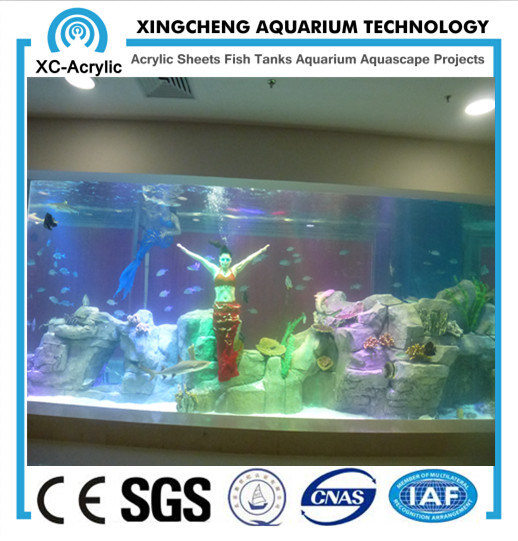 Large Transparent Acrylic Sheet for Aquarium by Customized/ Thick Acrylic Sheet of Acrylic Sheet Aquarium