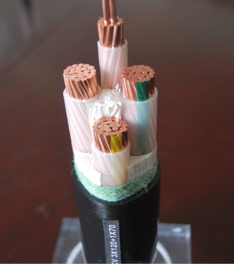 XLPE Insulated Power Cable (CU/XLPE/PVC)