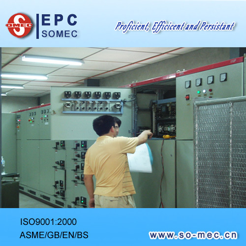 Power / Cogen Plant Project Engineering Management