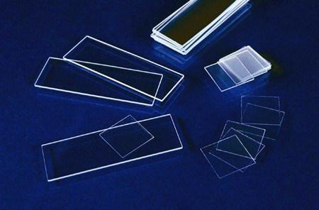 Microscope Slides/Prepared Microcope Slides/Prepared Slides
