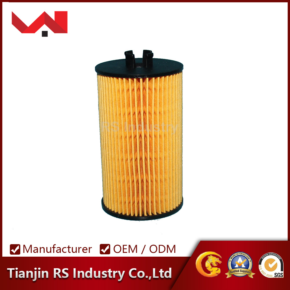 OEM E61 1h 55 353 324 Auto Oil Filter for Cars