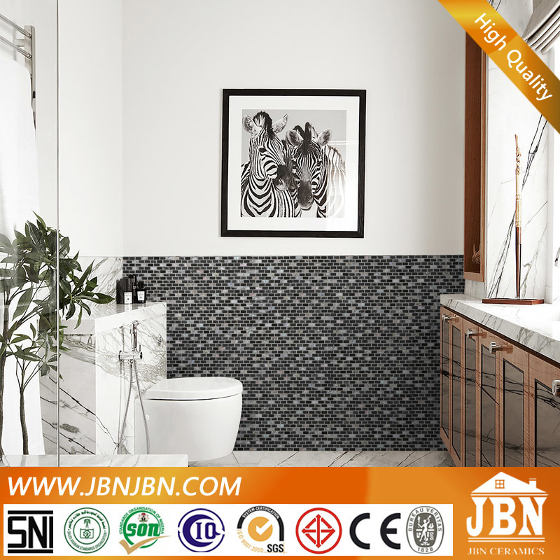 Pearl Shell Mosaic and Glass, Stone for Wall Border (M853001)