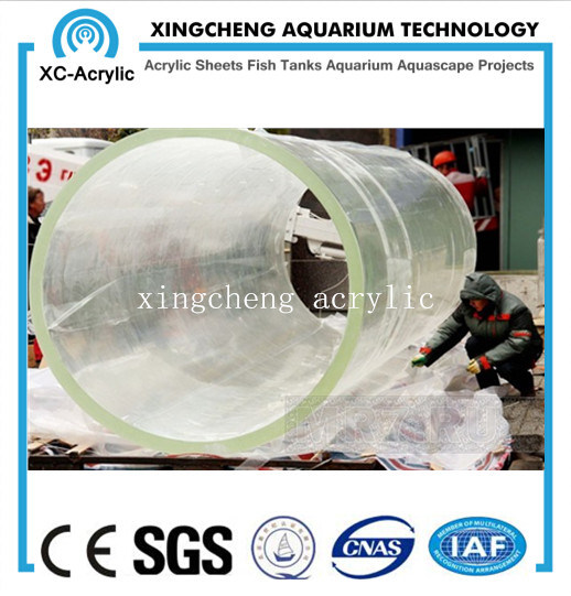 80mm Thick Acrylic Material Aquarium for Aquarium Project